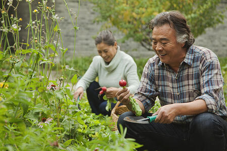 Seniors and the Benefits of Gardening